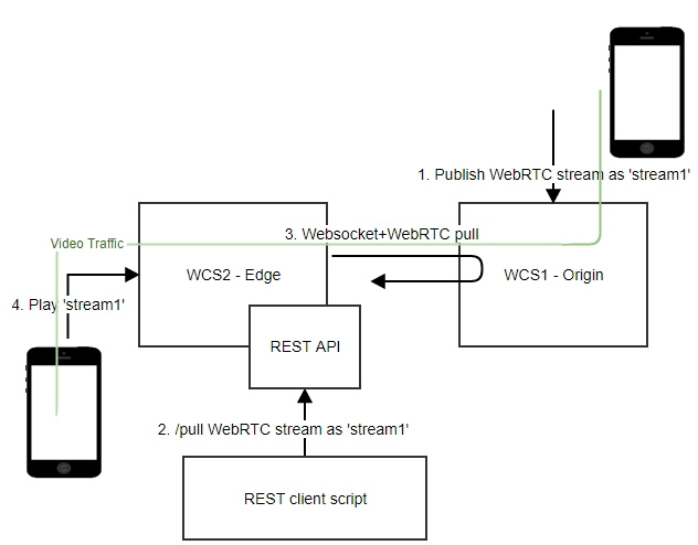 Server-to-Server WebRTC - Web development